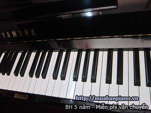 dan piano yamaha u3h (2)(1)