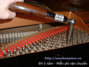 bao-tri-piano-len-day-dan-piano