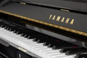 Báo giá đàn Piano Upright Yamaha mới nhất 2021