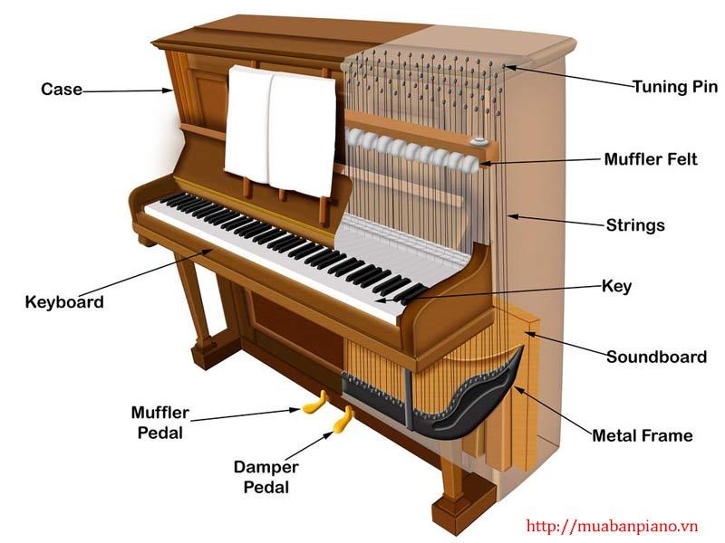 Cấu tạo đàn Piano Yamaha Upright