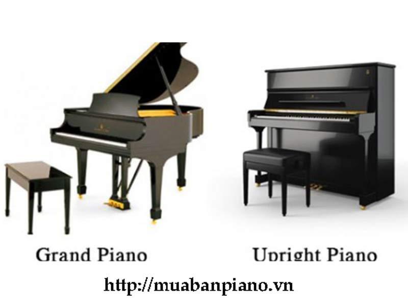 Đàn Piano cơ Yamaha và đàn Piano điện Yamaha