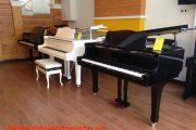 van-chuyen-dan-piano-gia-re