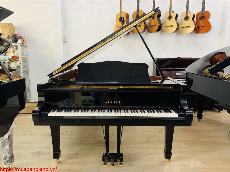 Top 3 địa chỉ bán Grand Piano giá rẻ 10đ chất lượng