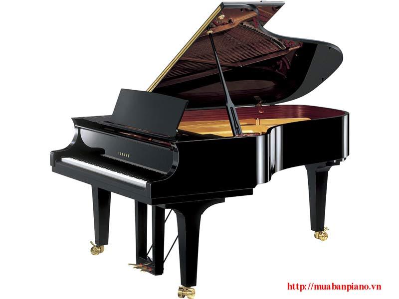 Dòng Grand Piano Yamaha