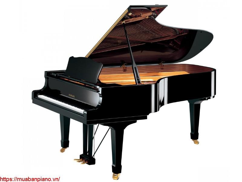 Top 10 địa chỉ uy tín bán đàn Grand Piano Yamaha tại Hà Nội