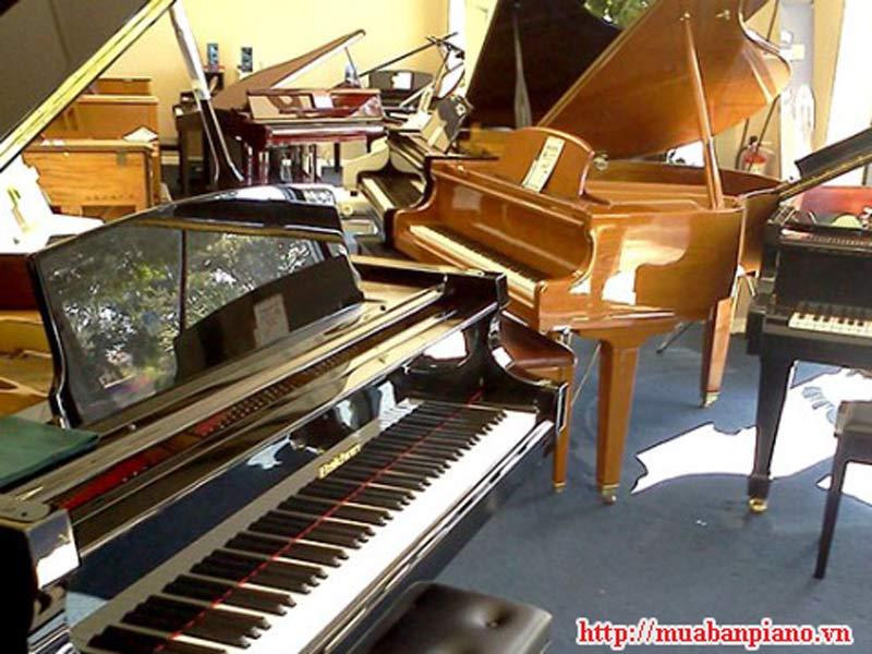 Các loại đàn piano cũ giá rẻ, chất lượng
