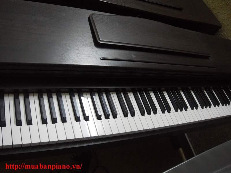 Bàn phím đàn piano Columbia EP-M25