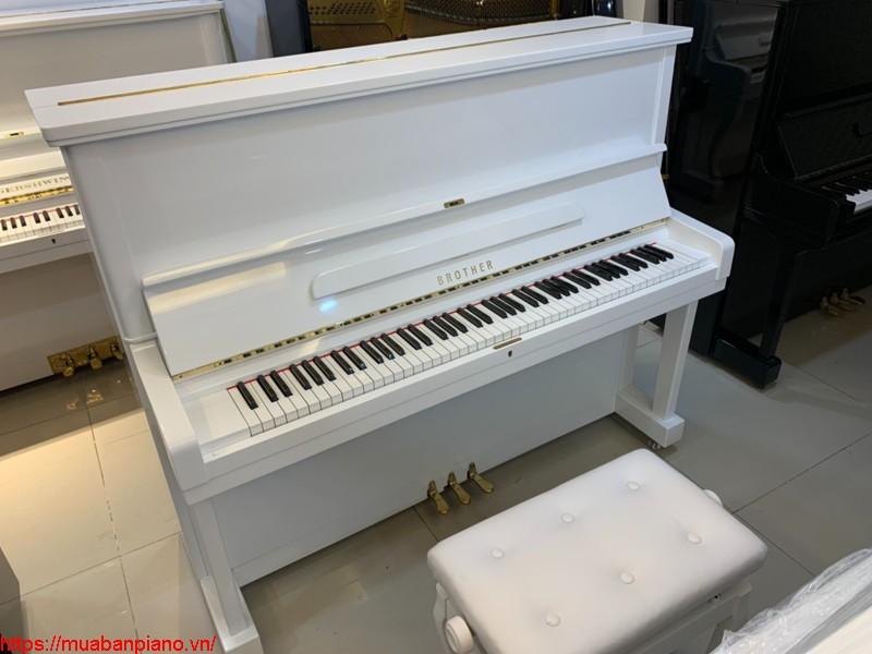 Bảng giá đàn Piano Brother mới nhất 2021