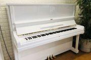 Mẫu đàn Piano Eastein trắng