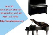 Top 8 địa chỉ mua đàn piano cơ Chính Hãng, Giá rẻ nhất Việt Nam