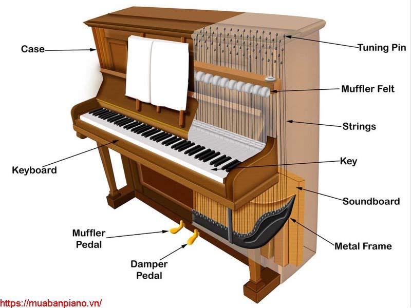 Cấu tạo đàn piano upright